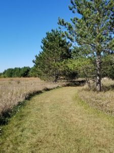 Hiking through the prarie in Lake Geneva, Wisconsin