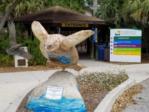Conservency of Naples Florida a fun Thing to Do in Naples