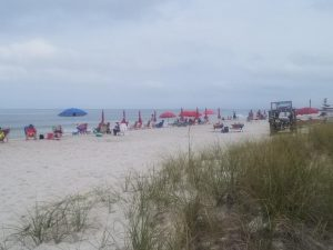 Free Things to Do in Naples Flordia - Beach at Lowdermilk Park