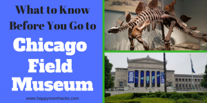12 tips to the Chicago Field Museum with kids. Enjoy this great Chicago attraction by knowing which exhibits to visit, where to eat, park and more. # familyvacation, #taveltips, #museums, #chicago