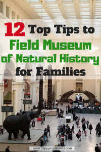12 Top Tips for visiting Chicago Field Museum with Kids. Looking for great Chicago attractions for your family? You'll love the Field Museum of Natural History. Know before you go the best exhibitions, where to eat, park and more. Make it a fun and memorable day with these awesome Field Museum Tips.
