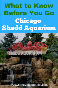 Top Tips for your visit to Chicago Shedd Aquarium with kids. Things to do, where to park, eat, and best exhibits for families. #sheddaquarium, #familytravel, #chicagoattractions