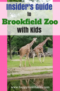 Brookfield Zoo Tips with Kids. Ultimate Insider's Guide to the Brookfield Zoo. All the tips and tricks you need to visit this family friendly Chicago Attraction. Things to do plus events like Brookfield Zoo Lights, and Brookfield Zoo Summer Nights. Plan for a great family day out!