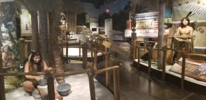 Free Things to Do in Marco Island Florida - visit Marco Island Museum, Beaches and local parks. #free #marcoisland #florida