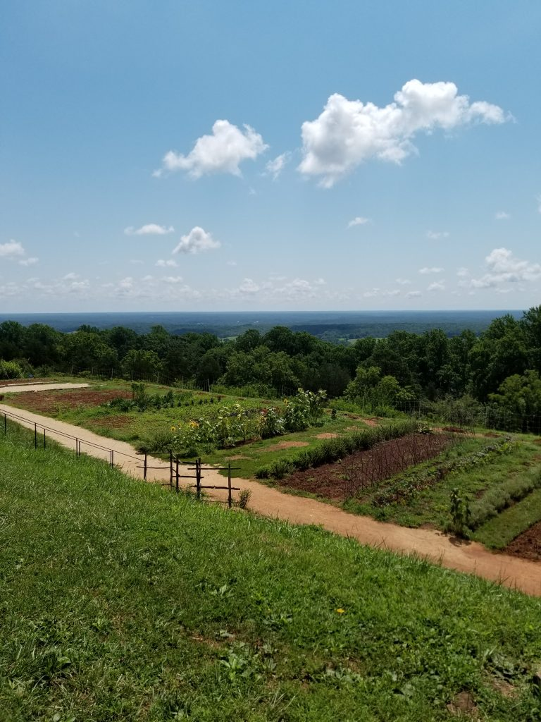 Vegetable Gardens at the Monticello Plantation.