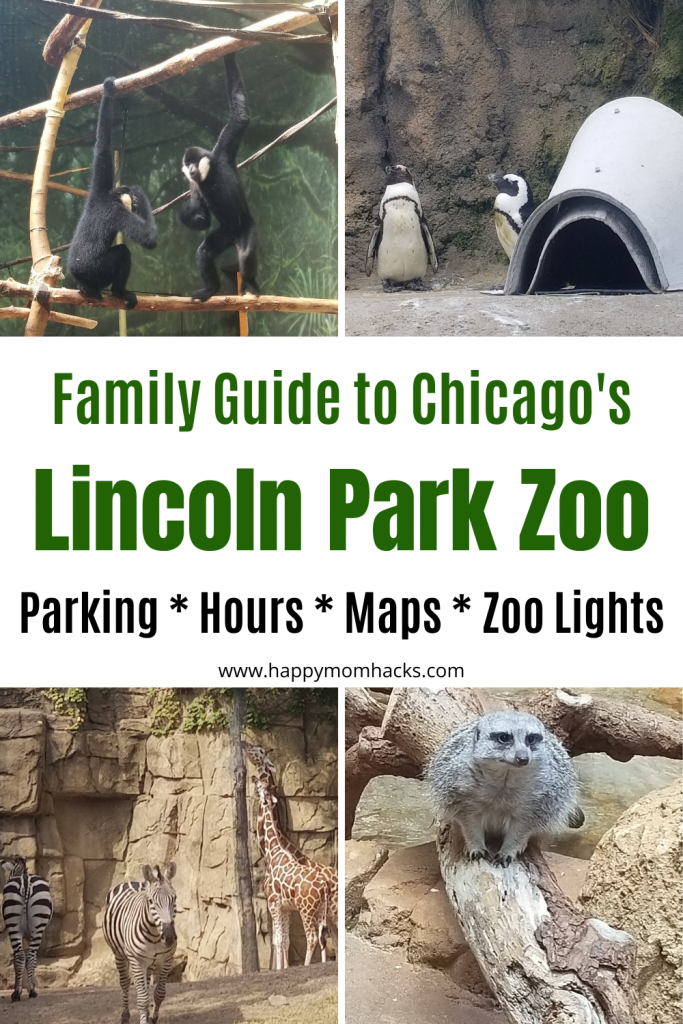 Chicago Attractions the Lincoln Park Zoo Visitors Guide to Parking, Maps, Hours, where to eat and Zoo Lights & Events. Everything you need to know before you go. Plus cool Chicago Attractions in the area. Make it a full day of family fun! #lincolnparkzoo #chicagoattractions #chicagozoo