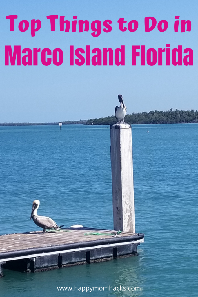 Marco Island Florida- Top Things to do with Kids from beautiful beaches to cool museums, restaurants & nature parks. Your complete guide to family vacation on Marco Island. What you can't miss! #marcoisland #florida #floridavacation #familyvacation #marco #beaches #kids