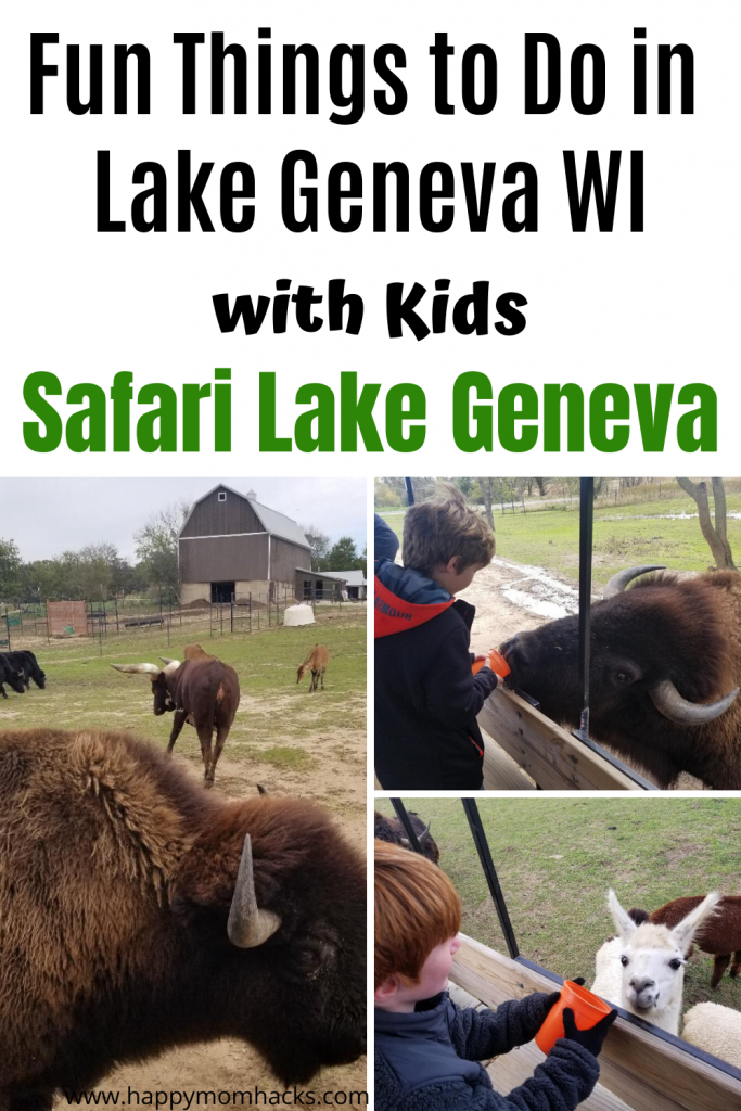 Fun Things to Do in Lake Geneva Wi with kids. Families will love visiting Safari Lake Geneva on their 800 acres filled with animals from 5 different continents. Read our review and be ready to go. #safarilakegeneva #lakegeneva #wisconsin #thingstodoinlakegeneva