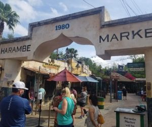 Tips for dining at Disney World with kids.