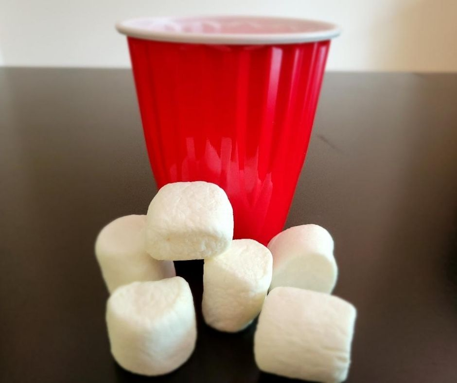Holiday Minute to Win It Party Game for Families. Snowball toss is a fun party game to play in groups at family Christmas parties.