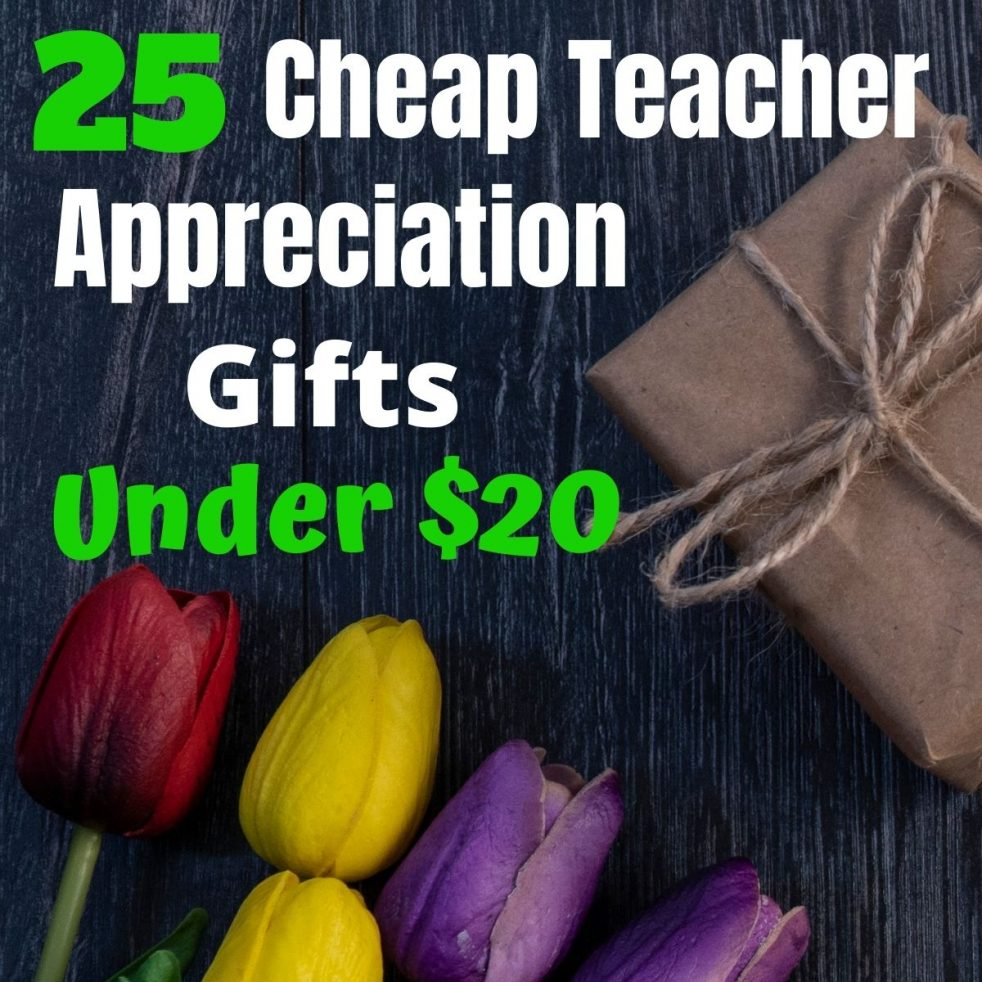 25 Cheap teacher appreciation gifts teachers love. Thoughtful and affordable gifts with DIY gift ideas, class gift idea and store bought ideas. A complete teacher gift guide for Christmas and End of the Year gift ideas. You're sure to find the perfect gift!